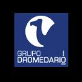 dromedario_Mesa de trabajo 1
